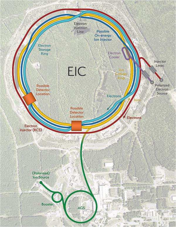 Schematic of the EIC
